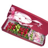 꽃상자 > 꽃상자17