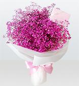 꽃다발 > 프리저브드안개꽃다발1