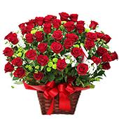 꽃바구니 > 붉은장미꽃바구니6