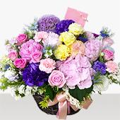 꽃바구니 > 로맨틱꽃바구니5