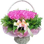 꽃바구니 > 꽃바구니3